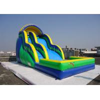 Quality Toddler Inflatable Water Slide Customized 0.55mm PVC Tarpaulin Double Lanes for sale