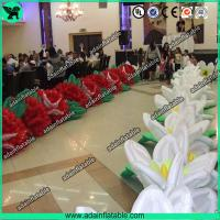 Wholesale Birthday Event Inflatable Flower,Birthday Party Inflatable,Inflatable Flower Chain from china suppliers
