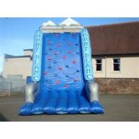 Wholesale Customized  Inflatable Climbing Wall YHCW 001 for Playing Center, Rental business from china suppliers