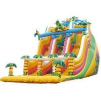 Inflatable Double Slides (LJF001C)