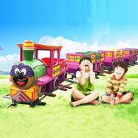 Children's large track small train amusement equipment indoor small train square for sale