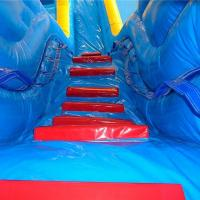 Wholesale Giant Blow Up Water Slide / Children'S Inflatable Slides Easy Storage from china suppliers