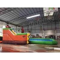 China Amusement Park Slide Durable Inflatable Water Fun Special For Kids / Adults on sale