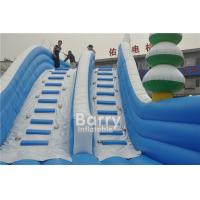Wholesale Customized Seals Tooth Inflatable Slip N Slide Summer Blow Up Water Slides from china suppliers
