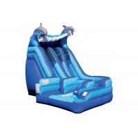 Wholesale Anti - Skid Kids Inflatable Jumping Castle , Blue Giant Inflatable Playground from china suppliers