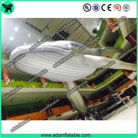 Wholesale Giant Inflatable Whale, Event Inflatable Whale,Inflatable Whale Replica from china suppliers