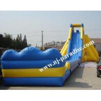 Wholesale Giant Inflatable Water Slide (CS-0102) from china suppliers