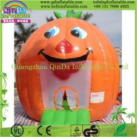 Wholesale Hot Sale Disney Park Theme Inflatable Bouncer Giant Inflatable from china suppliers