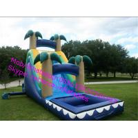 China Commercial Grade Adult And Kids Inflatable Water Slide on sale