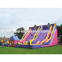 China Giant Inflatable Slide For Kids School Amusement Games on sale