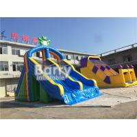 Wholesale PVC Tarpaulin Double Lanes Inflatable Water Slides Frog For Swimming Pool from china suppliers