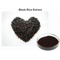 Wholesale Healthy Anti - Aging Black Rice Extract, Black Currant Extract Tonifying Kidney from china suppliers