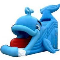 Wholesale Inflatable Water Slide (C11) from china suppliers
