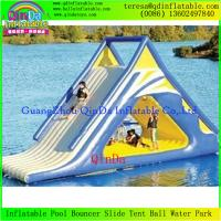 China Best Selling Kids Amusement Park Inflatable Water Slide PVC Inflatable Slides For Sale on sale