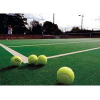 Wholesale Soft Anti - Friction Outdoor Tennis Court Surfaces , Wear Resistance Outdoor Grass Rug from china suppliers