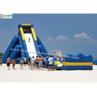 Hippo Inflatable Water Slide For Adult From Professional Inflatable Manufacturer