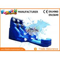 Attractive Blue Cartoon Outdoor Inflatable Water Slides For Kids and Adults
