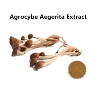 Wholesale Organic Agrocybe Mushroom Extract Powder Anti - Aging, Medicinal Mushroom Extract Powder Cancer Treatment from china suppliers