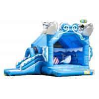 Adult Size Bounce House Inflatable Dolphin Bouncer Jumping Bouncy Castle