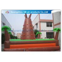 Outdoor Brown Mountain Inflatable Rock Climbing Wall For Teenagers Games