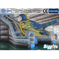 Wholesale Commercial Professional Grade Bounce House Dragon , Kids Inflatable Slides In Zoo from china suppliers