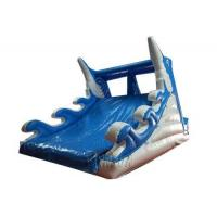 China Customized Inflatable Dolphin Water Slide WSS-248 With Air Blower 10x5x5.5m on sale