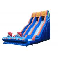Wholesale Garden Outdoor Inflatable Water Slide , Big Party Cartoon Toddler Water Slide from china suppliers