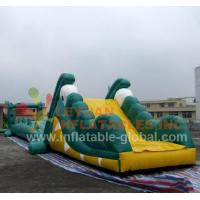 Wholesale Inflatable Water Game, Inflatable Crocodile Water Toy (LY-W22) from china suppliers