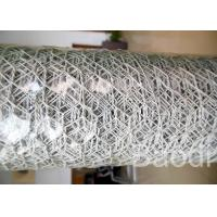 Wholesale White Color Plastic Poultry Netting / Chicken Wire Mesh Roll With Hexagonal Holes from china suppliers