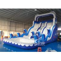 Wholesale Double Lanes Inflatable dolphin Water Slides with pool EN14960 For Adults and kids from china suppliers