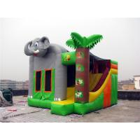 Commercial Grade Indoor Inflatable Bounce House Hand Painting Available