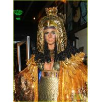 Wholesale NO.2884 Movie dragonfish cartoon costume from china suppliers