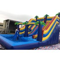 Wholesale Big Tropical Jungle Inflatable Water Slide Double Lane Slide / Ladder With Pool from china suppliers
