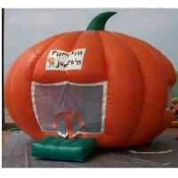 Wholesale Inflatable pumpkin bounce from china suppliers