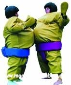 Wholesale 0.45mm PVC Inflatable Sport Games Sumo Suits YHSG-010 with mat for Wrestling from china suppliers