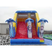 Quality Attractive Business Rental Inflatable Water Slides Commercial With Climbing Handle for sale