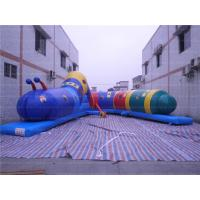 Wholesale Fun Caterpillar Inflatable Tunnel (CYOB-08) from china suppliers