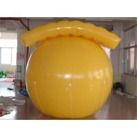 China Hot Air Balloon Price / Customized Inflatable Advertising Balloons / Helium Balloon on sale