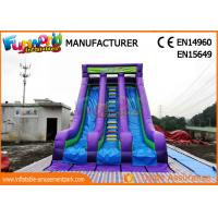 China Vertical Rish Commercial Inflatable Dry Slide For Outdoor Activity Waterproof on sale