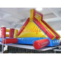 China Exciting Long Outdoor Inflatable Backyard Water Slide For Kids And Adults on sale