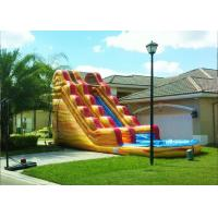 Wholesale Volcano Blow Up Water Slide , Outdoor Pool Slide Inflatable Lead Free from china suppliers