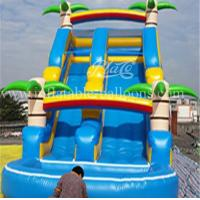 China Childrens Inflatable Bouncer Slide 1000D PVC Tarpaulin Inflatable Water Slide Park on sale